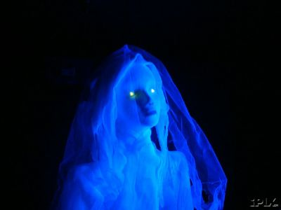 Life Size Flying Ghost Bride (#60 Cheesecloth)